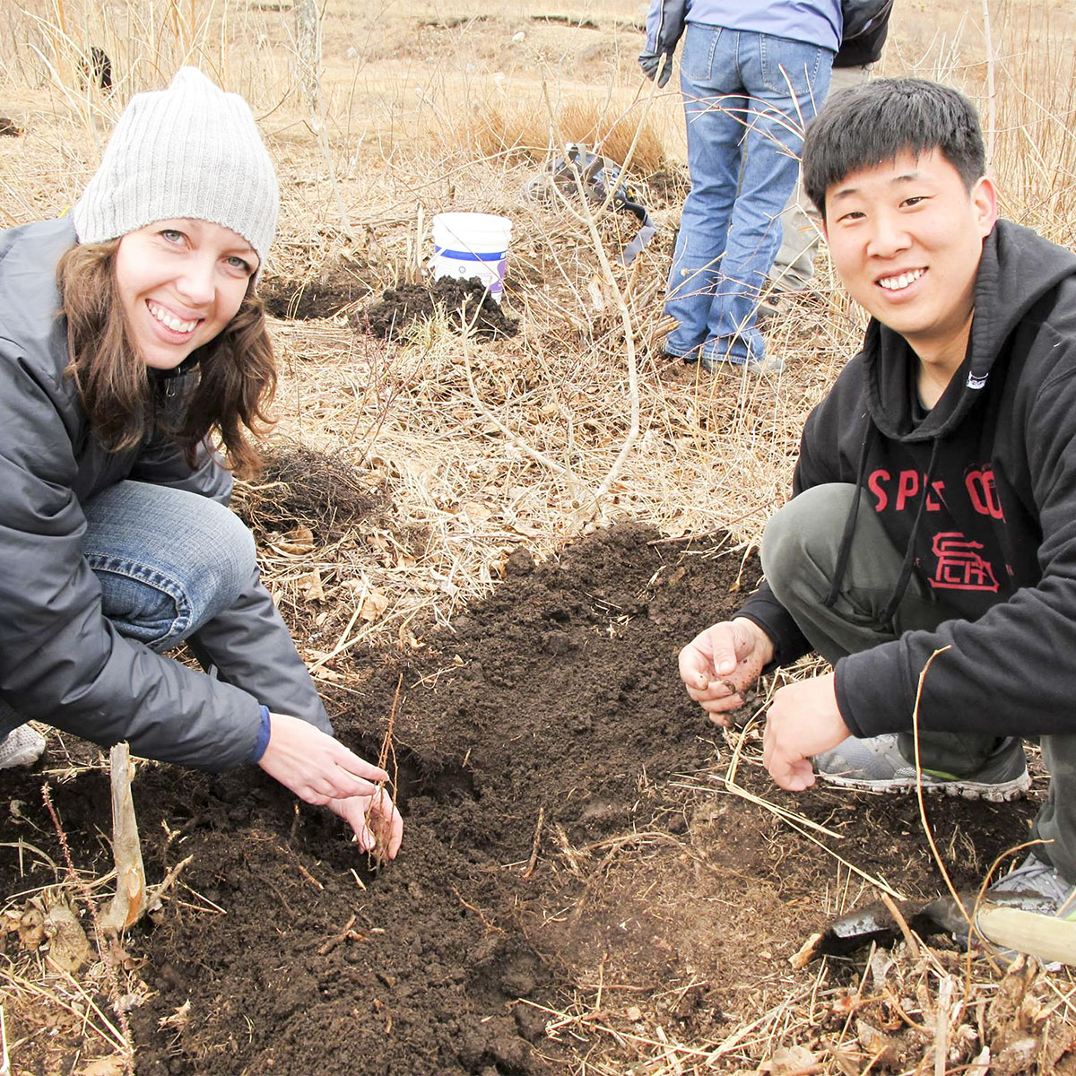 two people planting trees